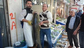 Şırnak'ta 130 kiloluk balık yakalandı