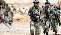Nusaybinde 324 terörist etkisiz hale getirildi