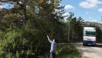 Çevre kirliliğini ağaçlara astığı çöplerle anlatıyor