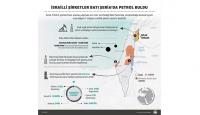 İsrailli şirketler Batı Şeriada petrol buldu