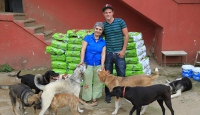 Ünlü dansçıdan sokak köpeklerine mama yardımı