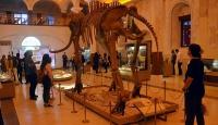 2,5 milyon yıllık fosiller ziyaretçilerini bekliyor