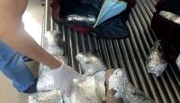 Havalimanındaki valizden uyuşturucu çıktı