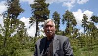 Köylüler örgütlendi 9 milyon fidan toprakla buluştu