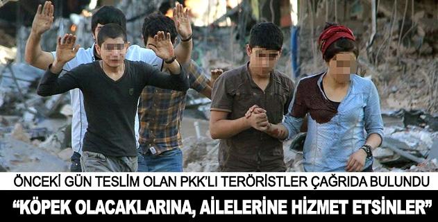 Teröristlerden devletin adaletine sığının çağrısı