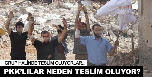 PKKnın bölgeyi kontrol girişimi çökmüştür