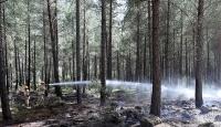 Ukraynada yangın faciası