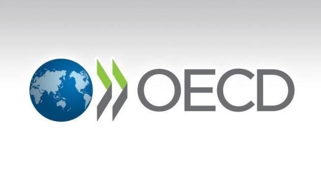 OECD, Türkiyenin büyüme tahminini yükseltti