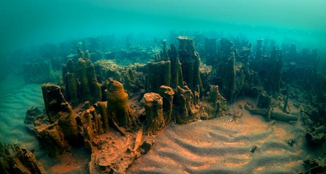 Van Gölünde 20 metrelik dikitler bulundu