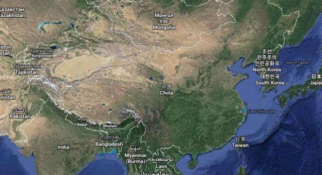 Çinde köpek eti yeme festivaline büyük tepki