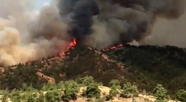 Güney Kıbrıstaki yangın 2 can aldı