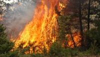 Orman yangınlarına karşı 7 gün 24 saat denetim