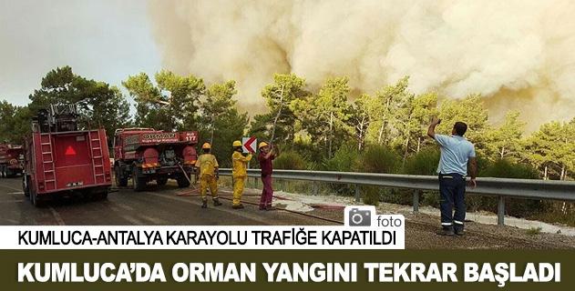 Orman yangını yol kapattırdı