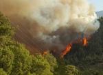 Kumlucadaki orman yangını
