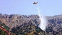 Californiadaki yangınlarda 2 kişi öldü