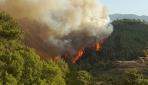 Kumlucada orman yangını