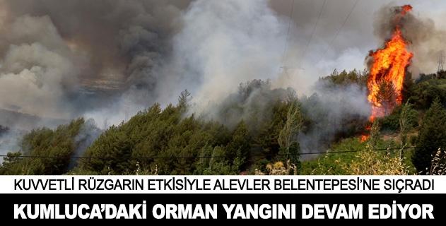 Kumlucadaki orman yangını devam ediyor