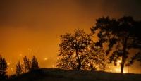 Yangınlarda ürünleri zarar görenler için nakdi yardım yapılıyor