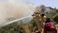 Adrasandaki orman yangınına müdahale ediliyor