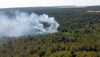 Gelibolu Yarımadasındaki orman yangını söndürüldü
