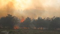 Hataydaki orman yangınına havadan ve karadan müdahale