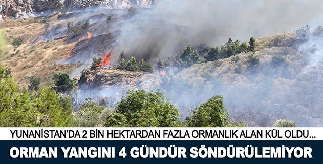 Yunanistanda orman yangını 4 gündür söndürülemiyor