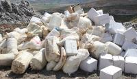 Kayseride 19 ton bozulmuş peynir ele geçirildi