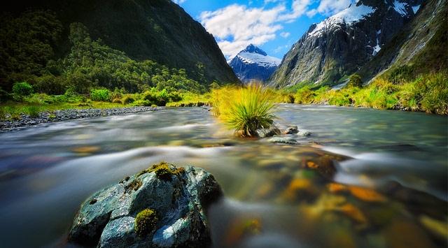 Insan ruhunu rahatlatan ve zihni sakin tutan doğadan çeşitli