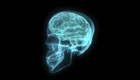 Beynin en fazla değişime uğrayan bölgeleri