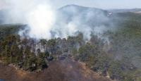 Alanyada orman yangını sürüyor