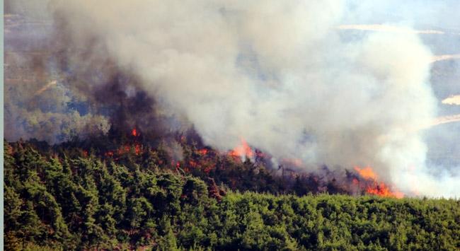 Antalyadaki orman yangını kontrol altına alındı