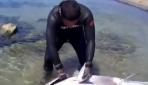 Zıpkınla 130 kiloluk orkinos avladı