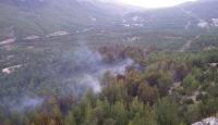 Pozantıdaki orman yangını kontrol altına alındı
