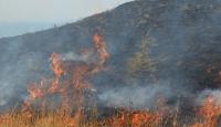 Manisada ormanlık alanda yangın