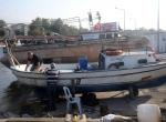 Balıkçılar palamuttan yana umutlu