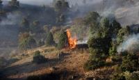 Erzincandaki arazi yangını
