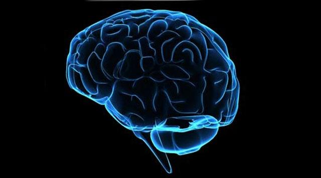Aşırı kilo beyni de etkiliyor