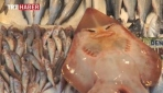 Balığın yüzü şaşırtıyor
