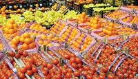 Rus firmalarından yaş sebze meyve talepleri geliyor