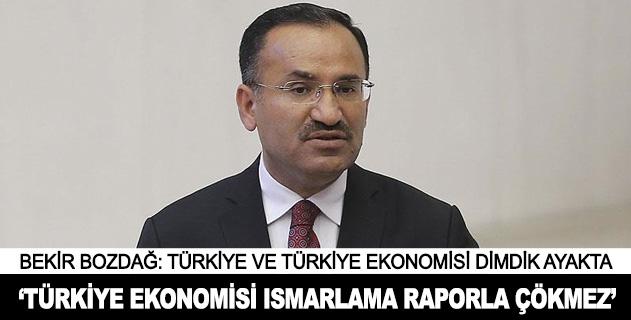 Türkiye ekonomisi ısmarlama raporlarla çökmez