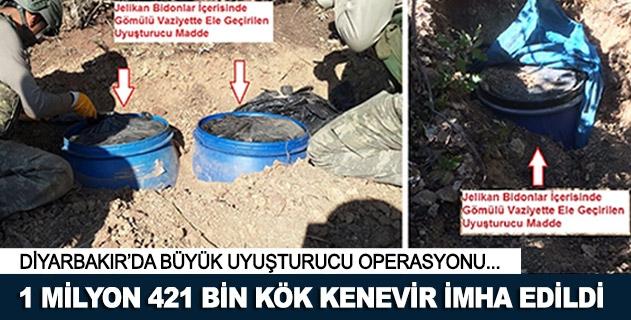 Diyarbakırda 1 milyon 421 bin kök kenevir imha edildi