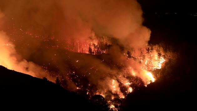 Peruda orman yangını 12 bin hektarlık alanı kül etti