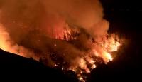 ABD orman yangınlarıyla boğuşuyor