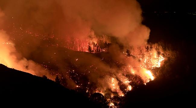 PKKlılar bu seferde orman yangını çıkardı