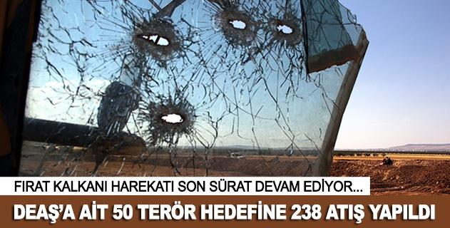 50 DEAŞ hedefine 238 atış yapıldı
