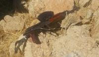 Siirtte silah ve mühimmat ele geçirildi