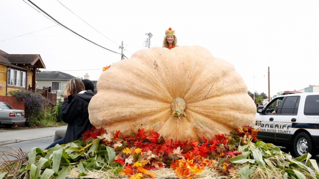 ABDde 866 kilogramlık bal kabağı sergilendi