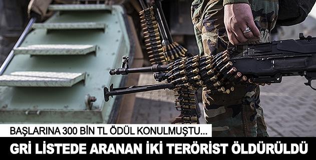 Öldürülen 2 PKKlının gri listede olduğu ortaya çıktı