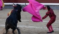 Katalonyada boğa güreşi yasağı kaldırıldı