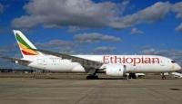 Etiyopyada vahşi hayvanlar piste girince uçak kalkmadı